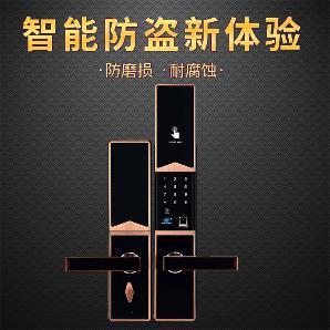 指纹密码防盗锁 多功能家用智能锁FCL3