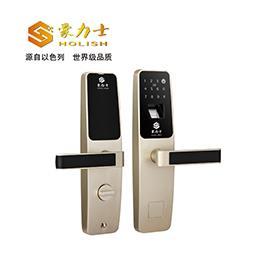 公寓智能锁锌合金材质、DC6V(4节5#电池)/DC9V备用钥匙D3633F
