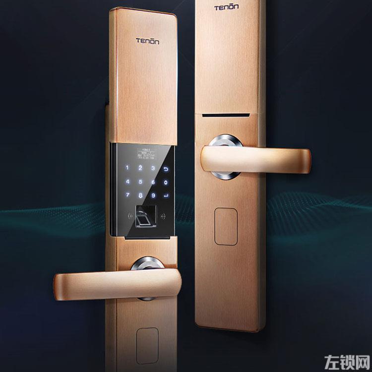 亚太天能指纹锁 家用防盗门智能锁V9