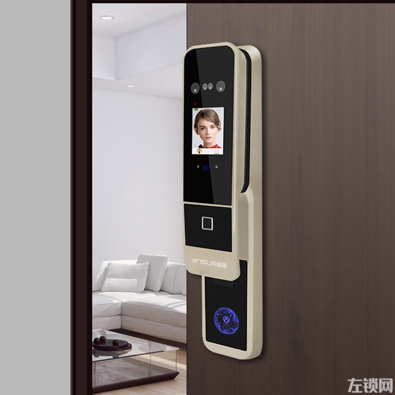 因硕指纹锁 F6电子密码人脸识别智能门锁价格
